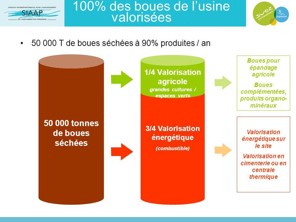 100% des boues de l'usine valorisées