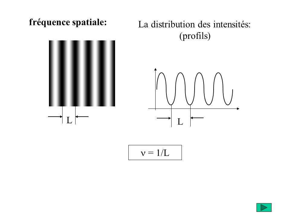 fréquence spatiale: La distribution des intensités: (profils) L L n = 1/L