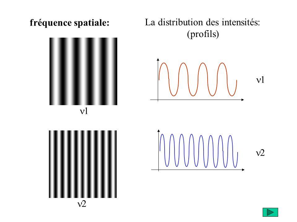 fréquence spatiale: La distribution des intensités: (profils) n1 n1 n2 n2