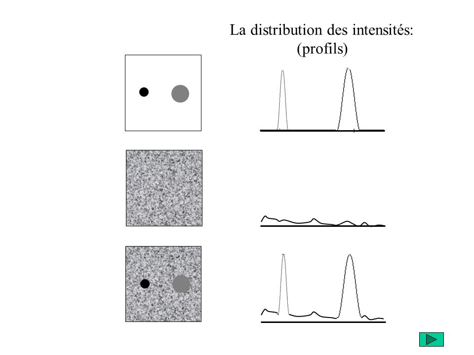 La distribution des intensités: (profils)
