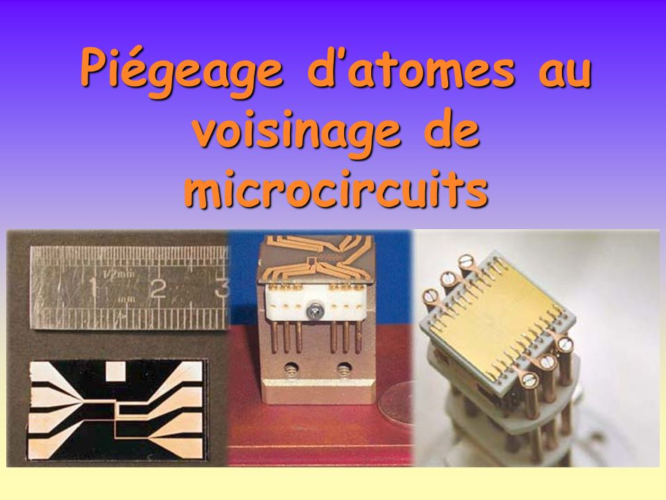 Piégeage d'atomes au voisinage de microcircuits