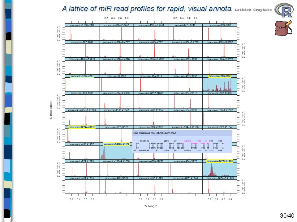 A lattice of miR read profiles for rapid, visual annotation