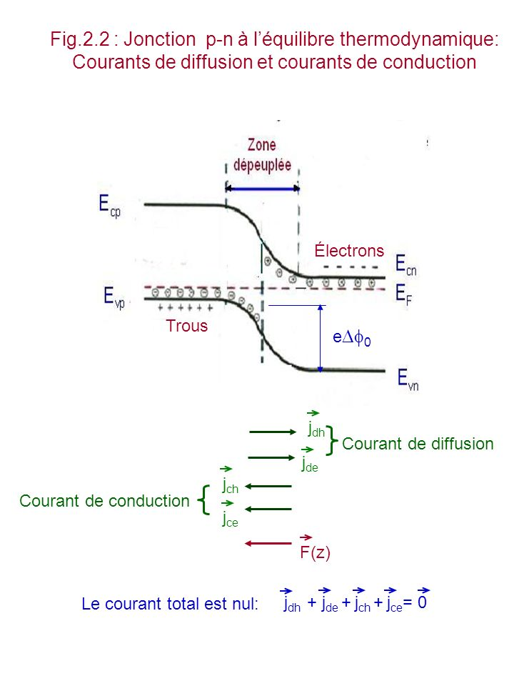 Fig.2.2 : Jonction p-n à l'équilibre thermodynamique: