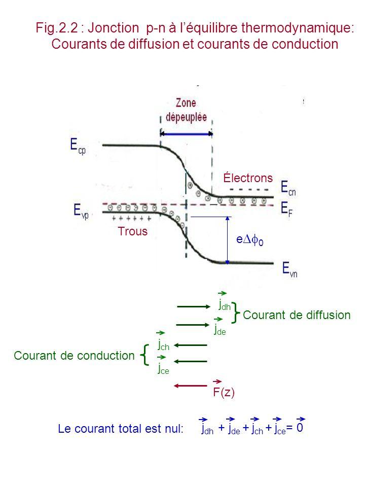 Fig.2.2 : Jonction p-n à l'équilibre thermodynamique: