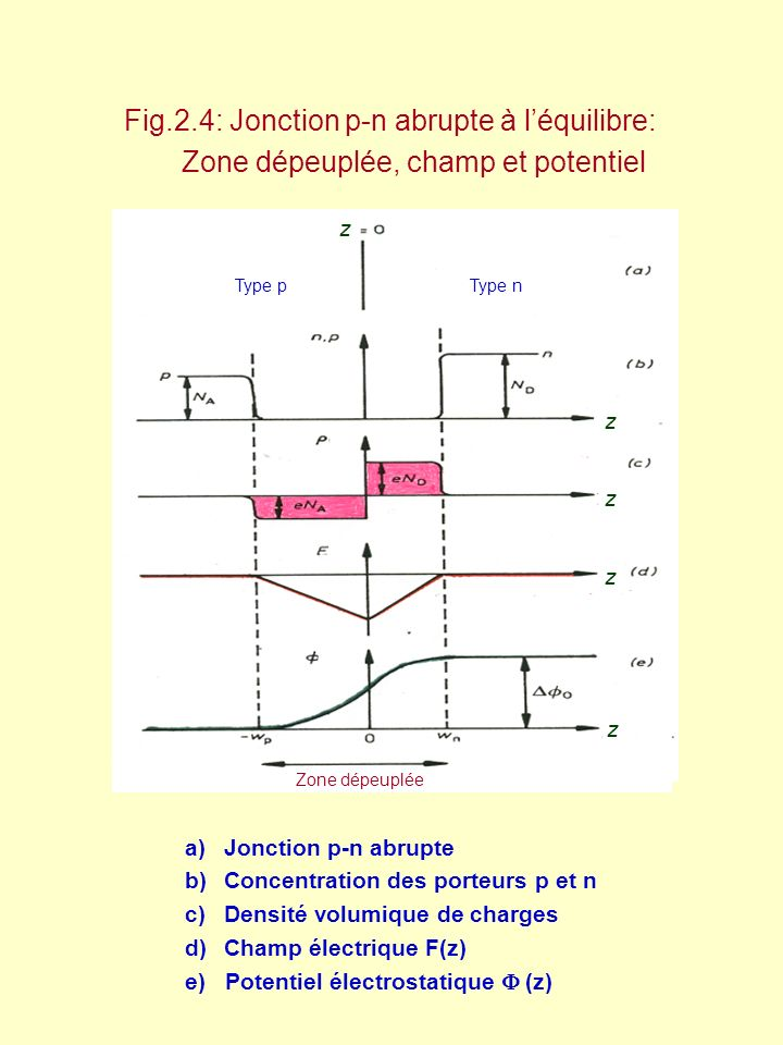 Zone dépeuplée, champ et potentiel