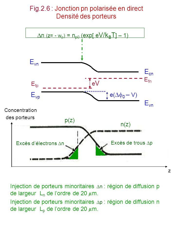 Fig.2.6 : Jonction pn polarisée en direct