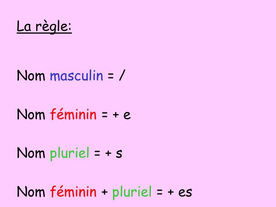 La règle: Nom masculin = / Nom féminin = + e Nom pluriel = + s Nom féminin + pluriel = + es