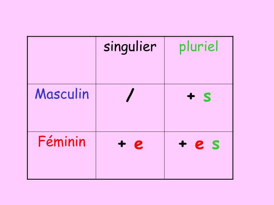 singulier pluriel Masculin / + s Féminin + e + e s