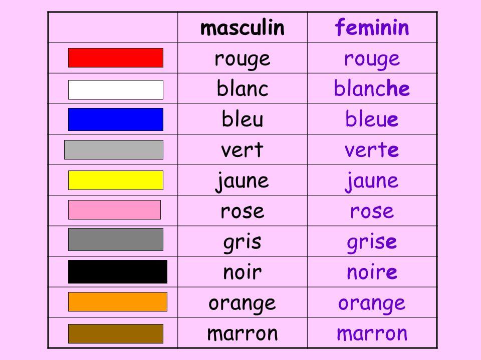 masculin feminin. rouge. blanc. blanche. bleu. bleue. vert. verte. jaune. rose. gris. grise.