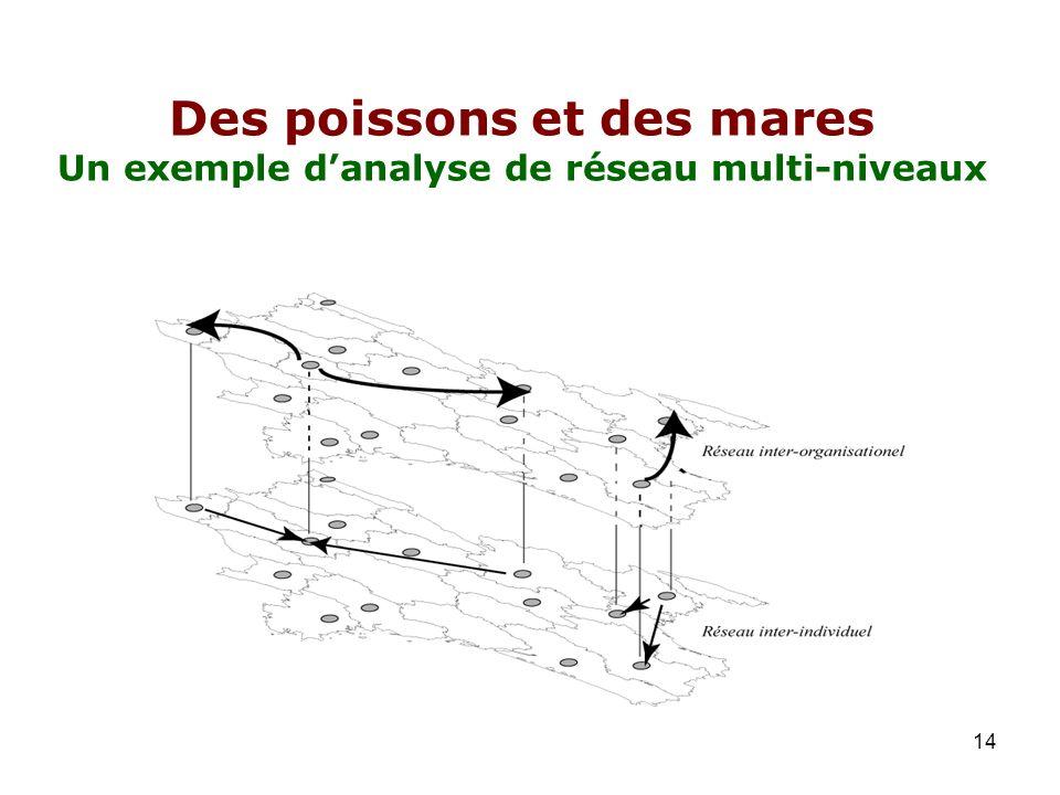Des poissons et des mares Un exemple d'analyse de réseau multi-niveaux