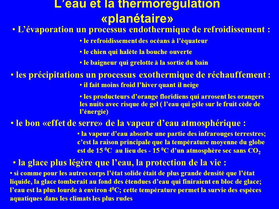 L'eau et la thermorégulation «planétaire»