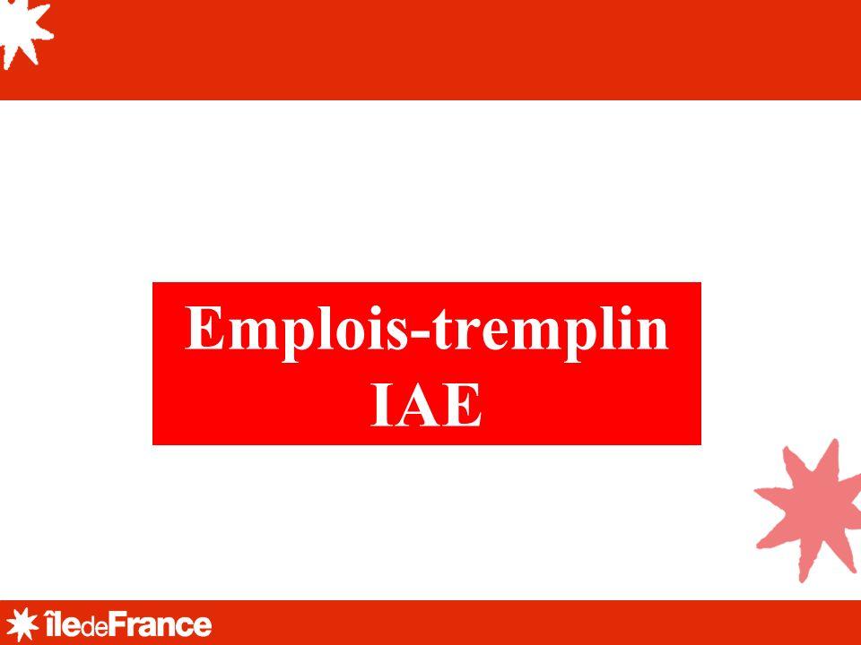 Emplois-tremplin IAE