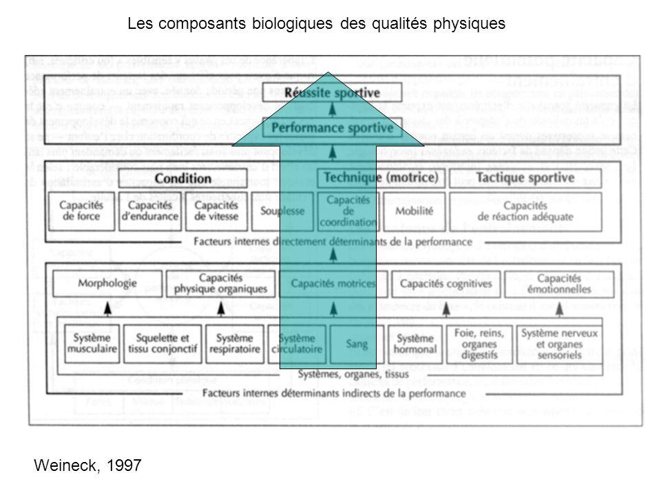 Les composants biologiques des qualités physiques