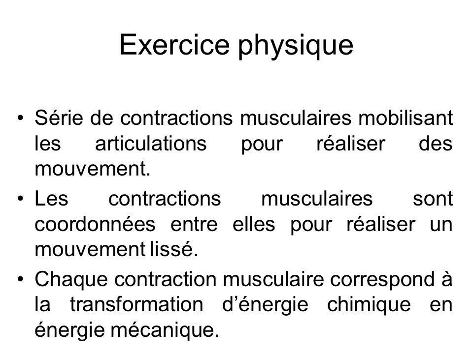 Exercice physique Série de contractions musculaires mobilisant les articulations pour réaliser des mouvement.