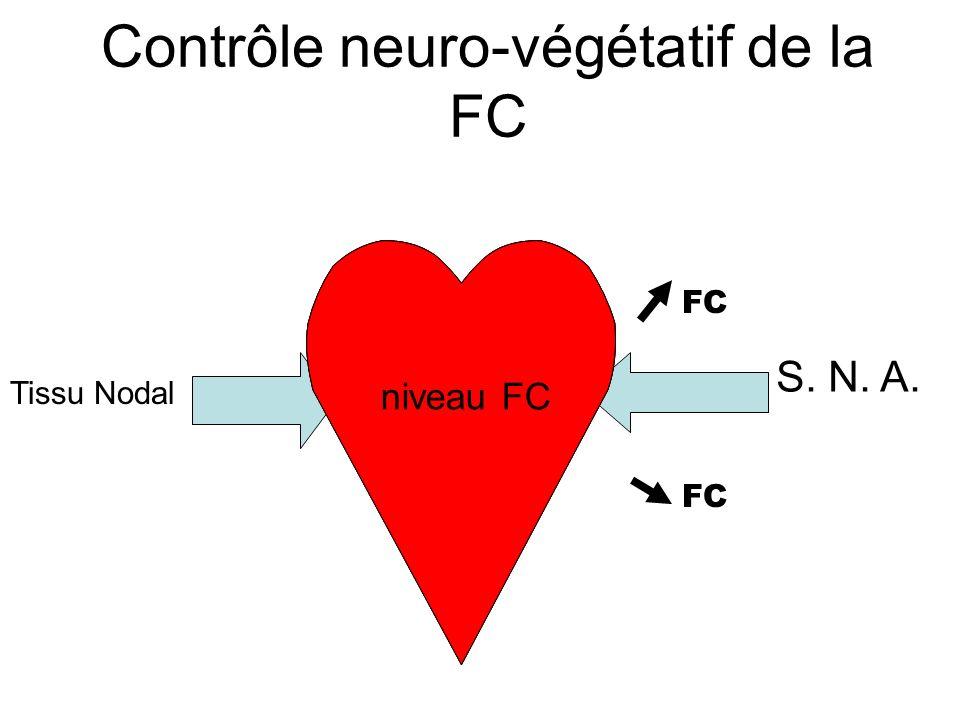 Contrôle neuro-végétatif de la FC