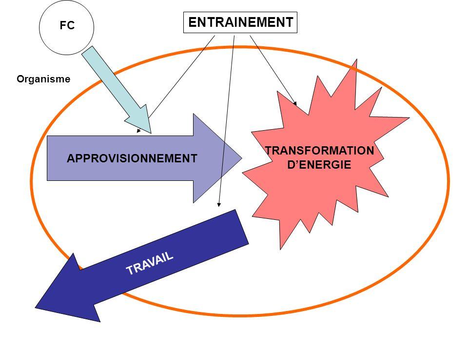 ENTRAINEMENT FC TRANSFORMATION D'ENERGIE APPROVISIONNEMENT TRAVAIL