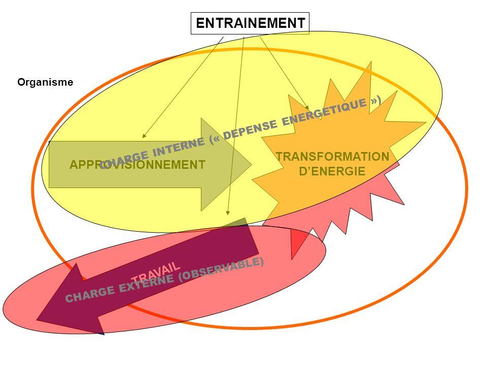 ENTRAINEMENT TRANSFORMATION D'ENERGIE APPROVISIONNEMENT TRAVAIL
