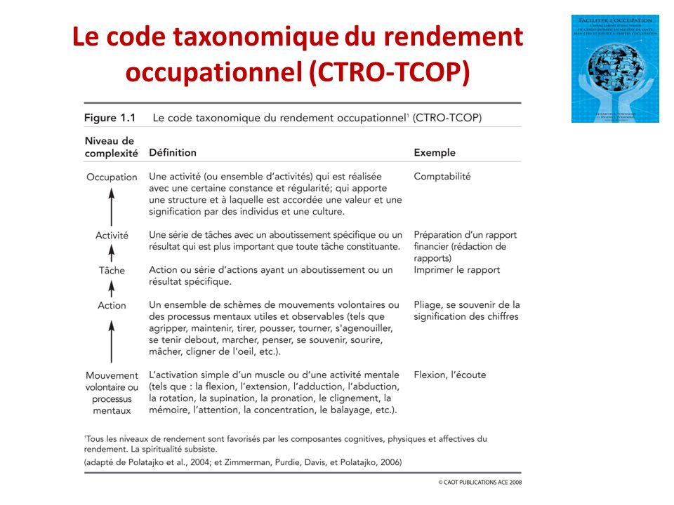 Le code taxonomique du rendement occupationnel (CTRO-TCOP)