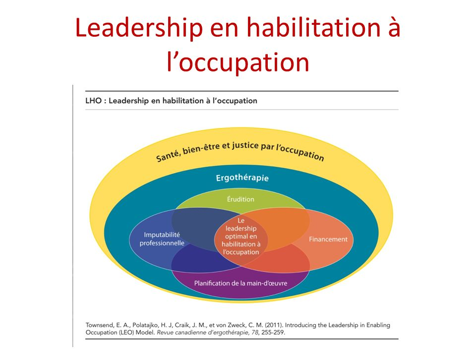 Leadership en habilitation à l'occupation
