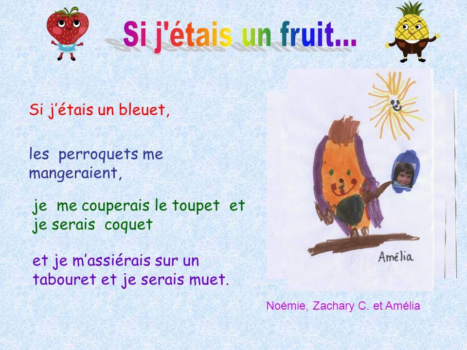 Si j étais un fruit... Si j'étais un bleuet,
