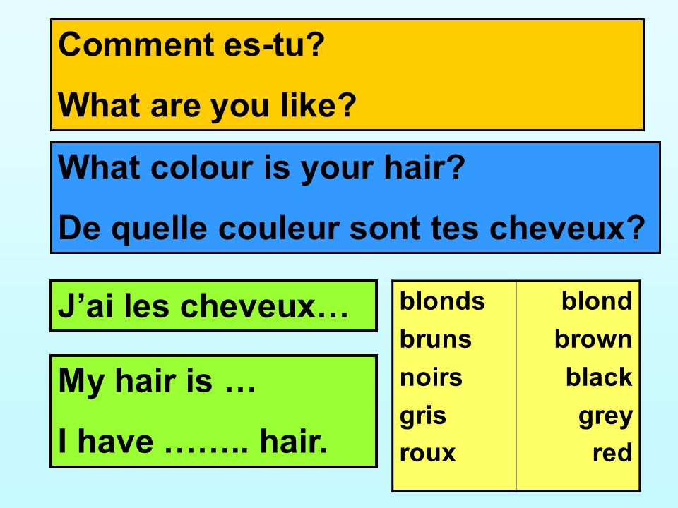 What colour is your hair De quelle couleur sont tes cheveux