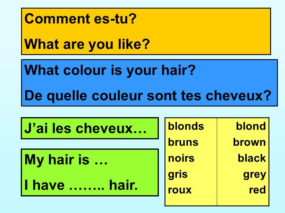 What colour is your hair De quelle couleur sont tes cheveux