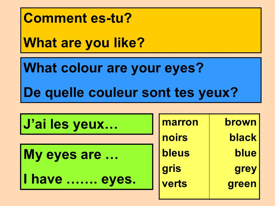 What colour are your eyes De quelle couleur sont tes yeux