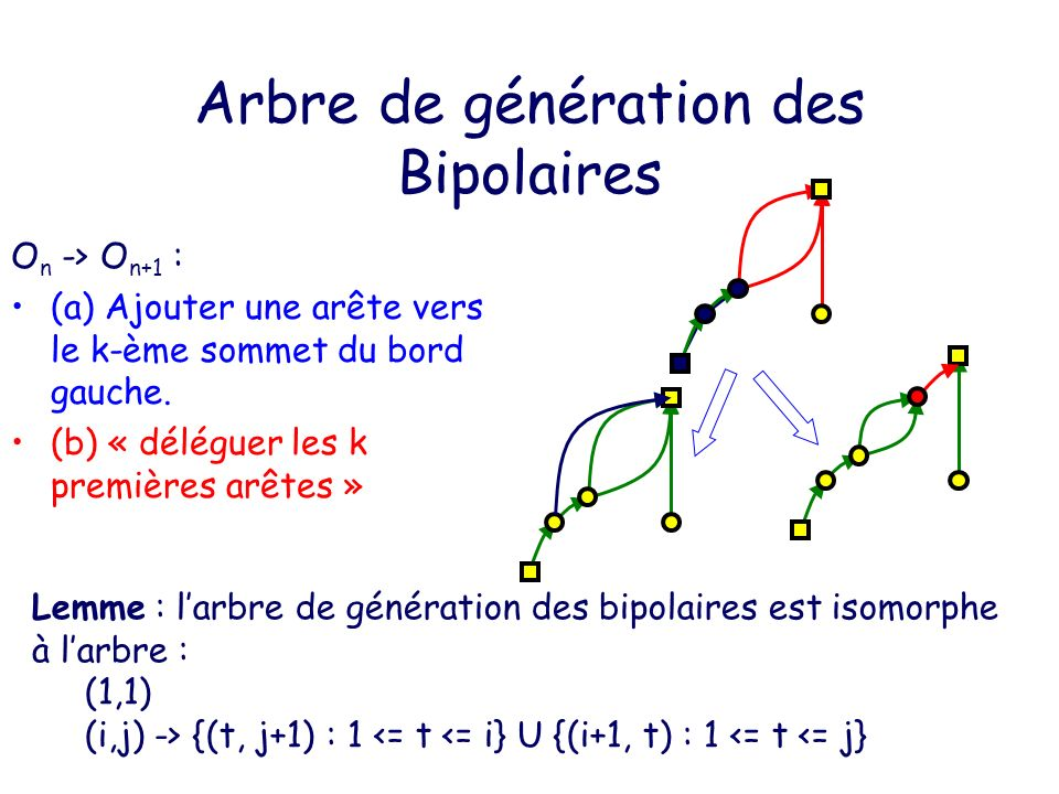 Arbre de génération des Bipolaires
