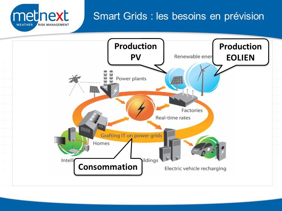 Smart Grids : les besoins en prévision