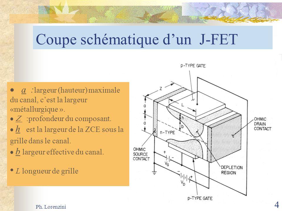 Coupe schématique d'un J-FET