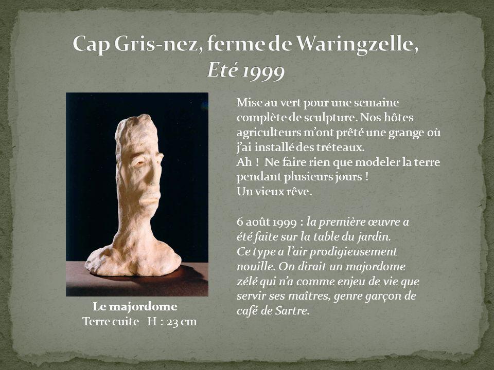 Cap Gris-nez, ferme de Waringzelle, Eté 1999