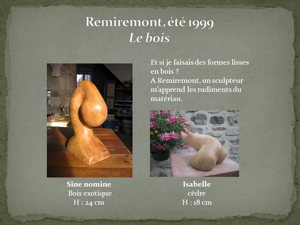 Remiremont, été 1999 Le bois Et si je faisais des formes lisses en bois A Remiremont, un sculpteur m'apprend les rudiments du matériau.
