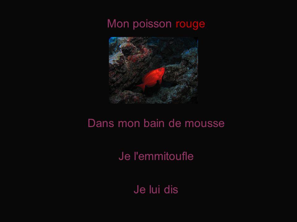 Mon poisson rouge Dans mon bain de mousse Je l emmitoufle Je lui dis