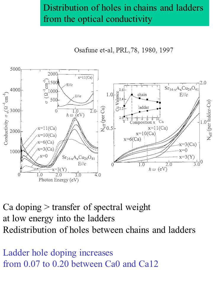 Distribution of holes in chains and ladders