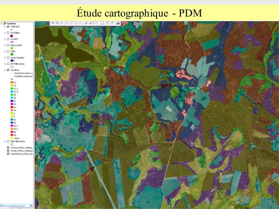Étude cartographique - PDM