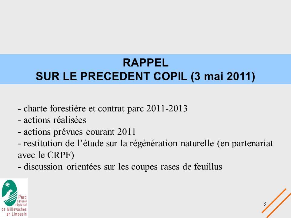SUR LE PRECEDENT COPIL (3 mai 2011)