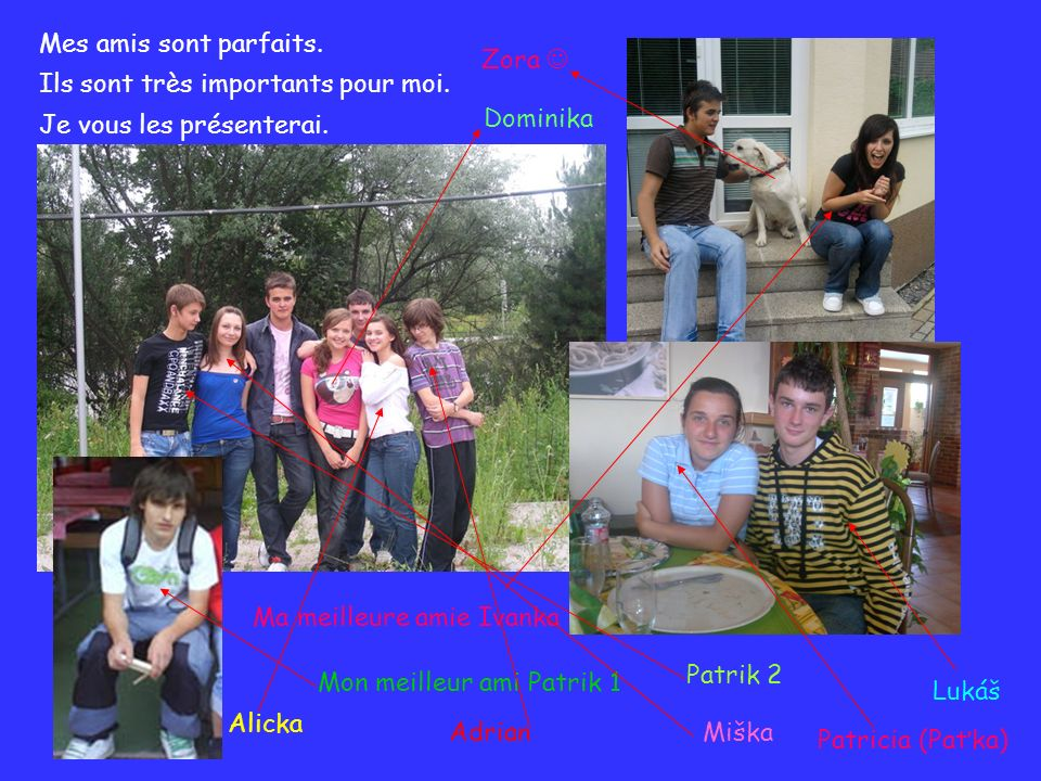 Mes amis sont parfaits. Ils sont très importants pour moi. Je vous les présenterai. Zora  Dominika.