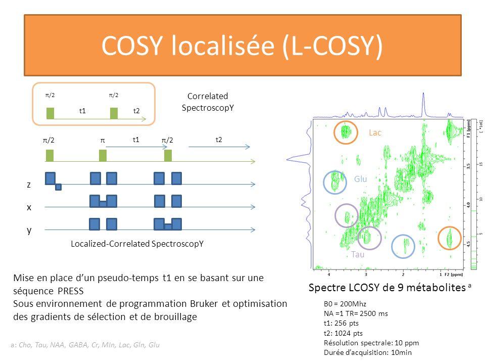 COSY localisée (L-COSY)