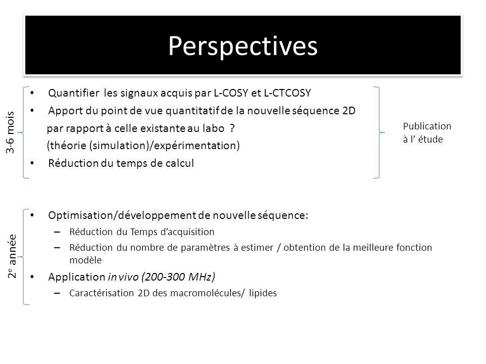 Perspectives Quantifier les signaux acquis par L-COSY et L-CTCOSY