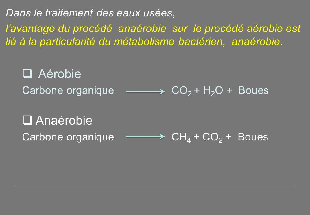Aérobie Anaérobie Dans le traitement des eaux usées,