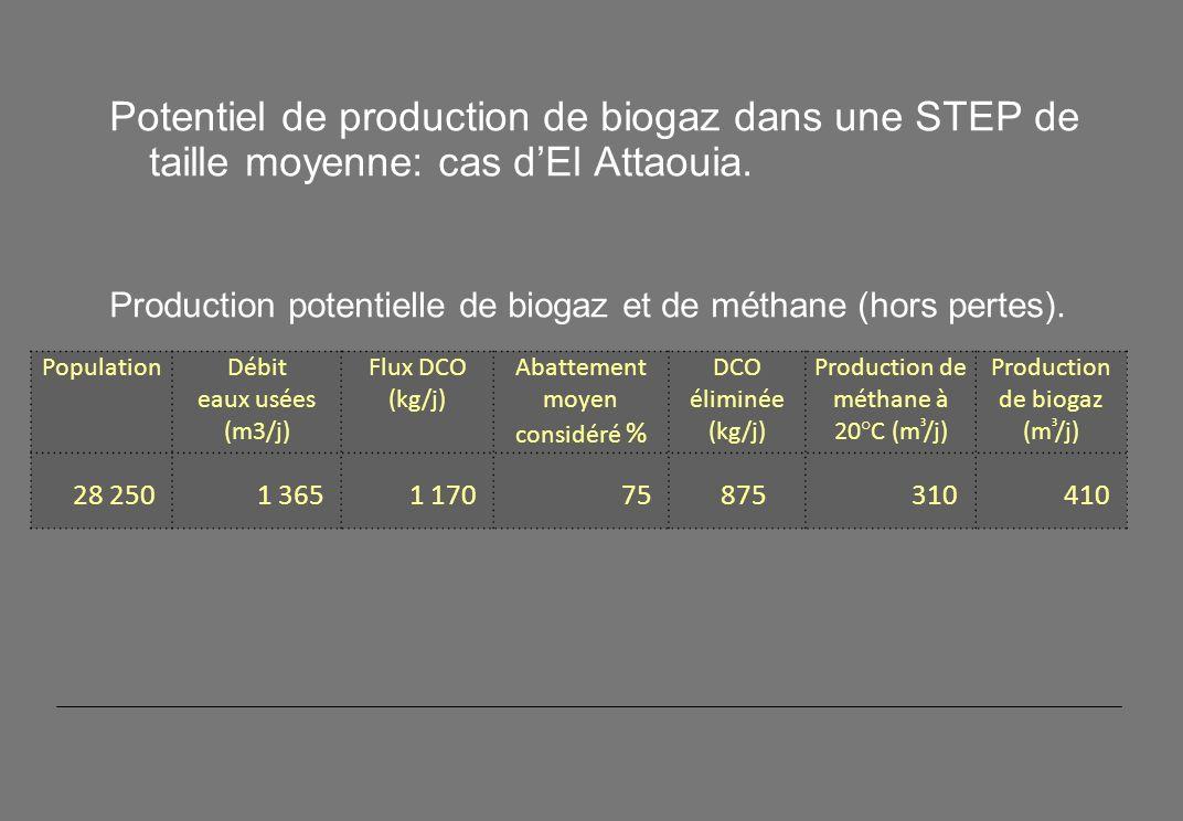 Potentiel de production de biogaz dans une STEP de taille moyenne: cas d'El Attaouia.