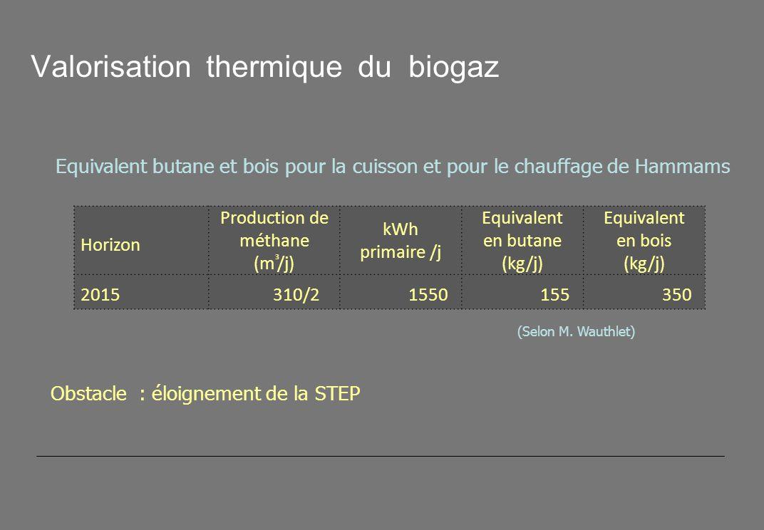Valorisation thermique du biogaz