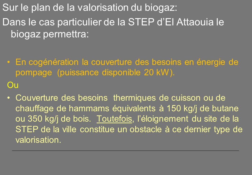 Sur le plan de la valorisation du biogaz: