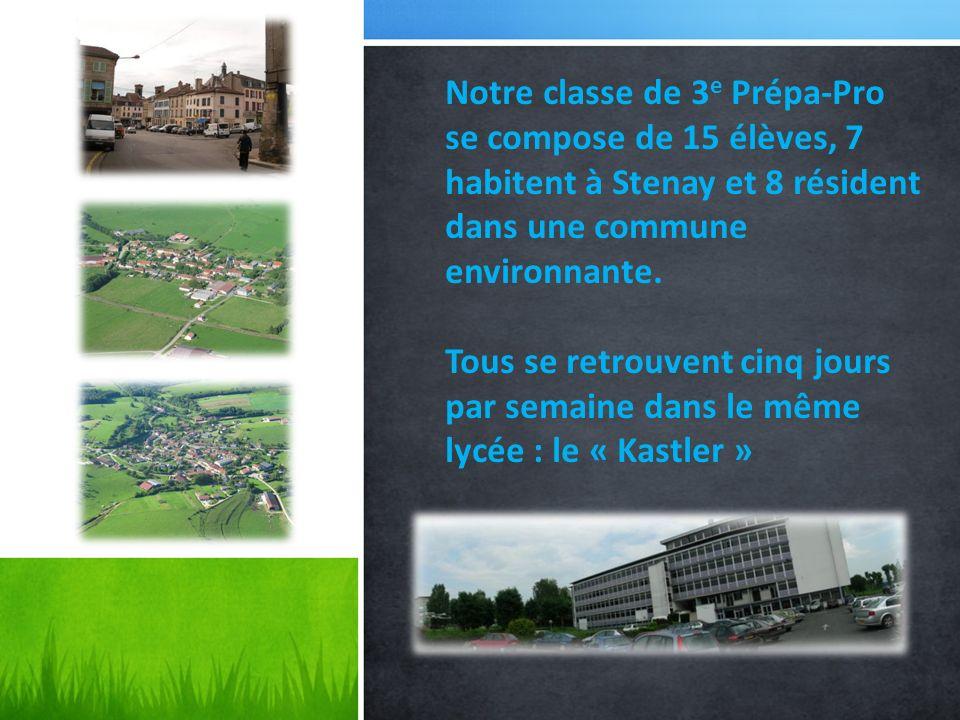 Notre classe de 3e Prépa-Pro se compose de 15 élèves, 7 habitent à Stenay et 8 résident dans une commune environnante.