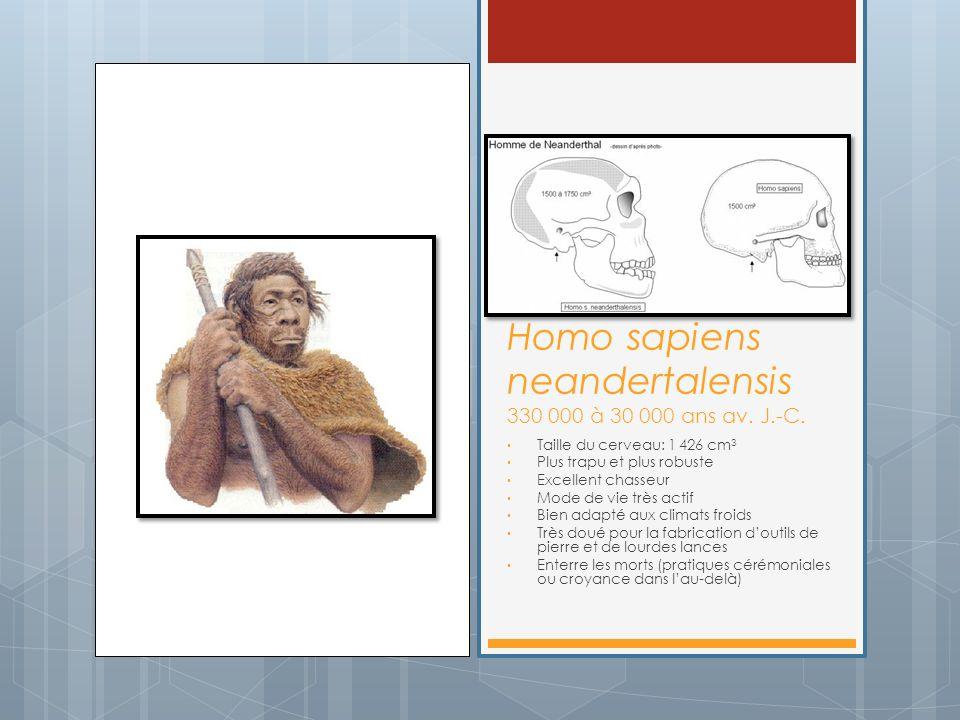 Homo sapiens neandertalensis 330 000 à 30 000 ans av. J.-C.