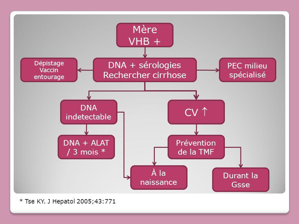 Mère VHB + CV  DNA + sérologies Rechercher cirrhose