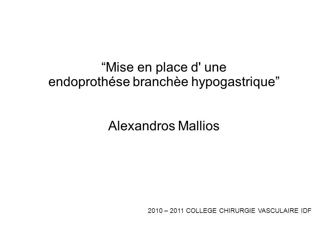 endoprothése branchèe hypogastrique