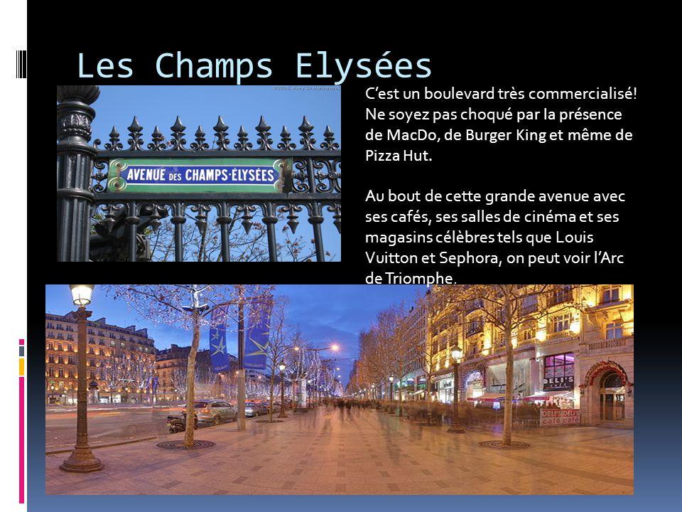 Les Champs Elysées C'est un boulevard très commercialisé! Ne soyez pas choqué par la présence de MacDo, de Burger King et même de Pizza Hut.