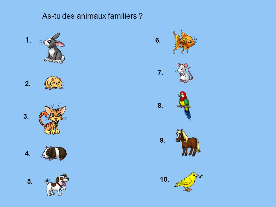 As-tu des animaux familiers