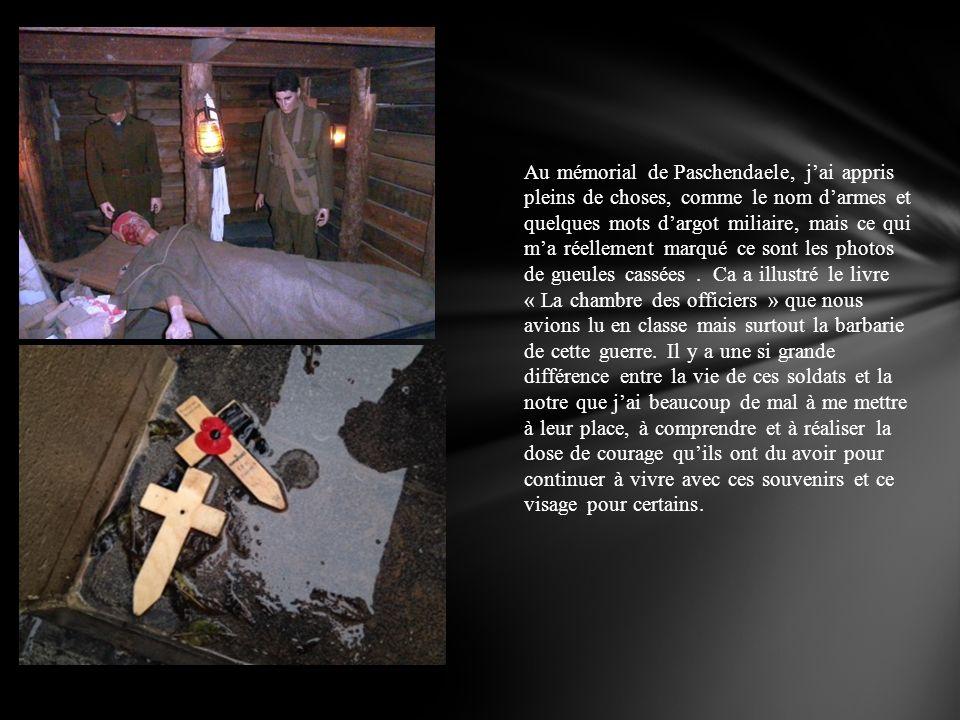 Au mémorial de Paschendaele, j'ai appris pleins de choses, comme le nom d'armes et quelques mots d'argot miliaire, mais ce qui m'a réellement marqué ce sont les photos de gueules cassées .